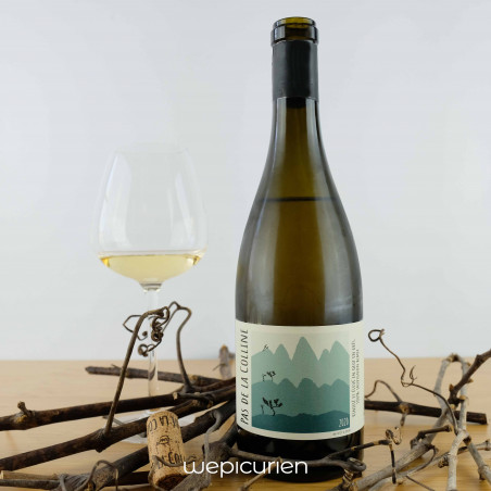 Wepicurien • Pas de la Colline Blanc sec 2020 | Clos de la Molénie • Bordeaux